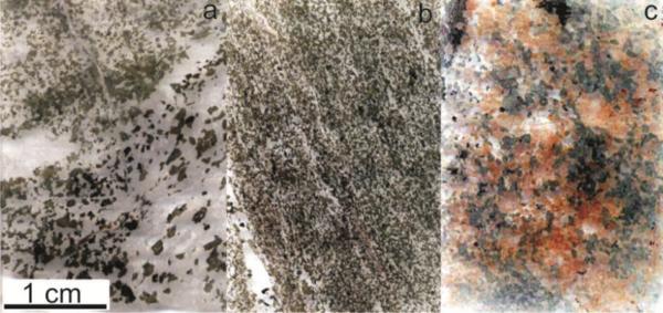 a - migmatised amphibolite, b - amphibolite, c – hydrothermally-altered amphibolite